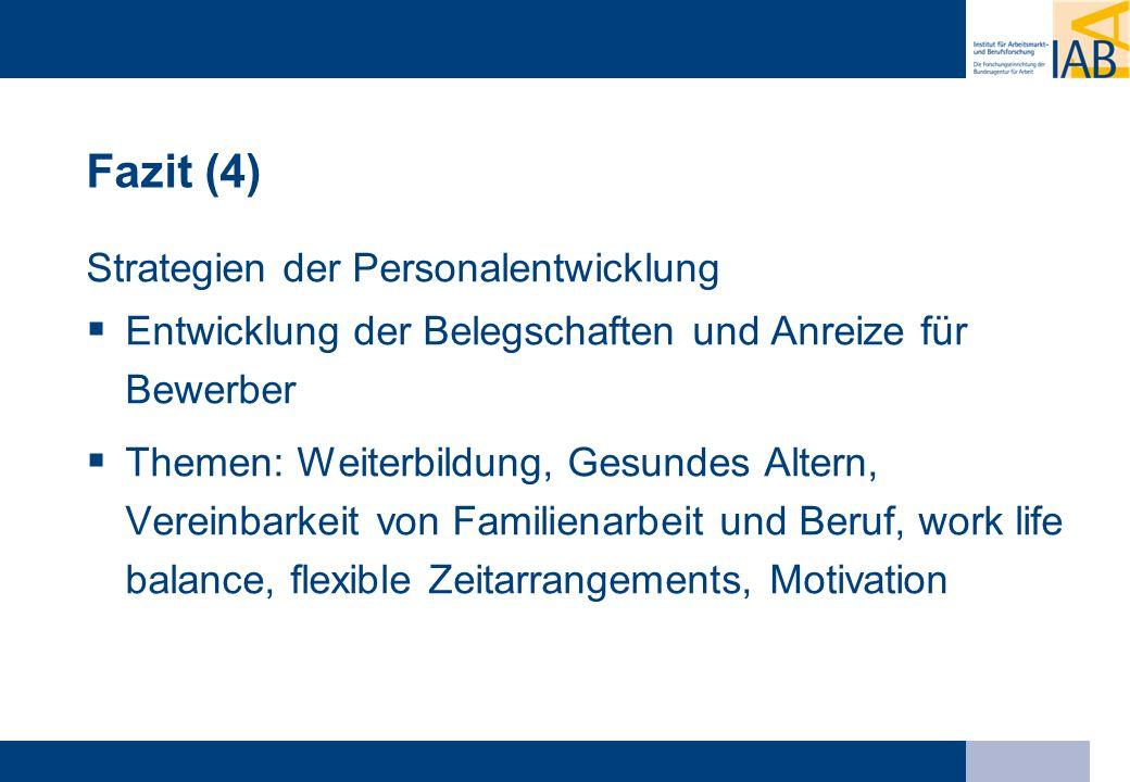 Fazit (4) Strategien der Personalentwicklung