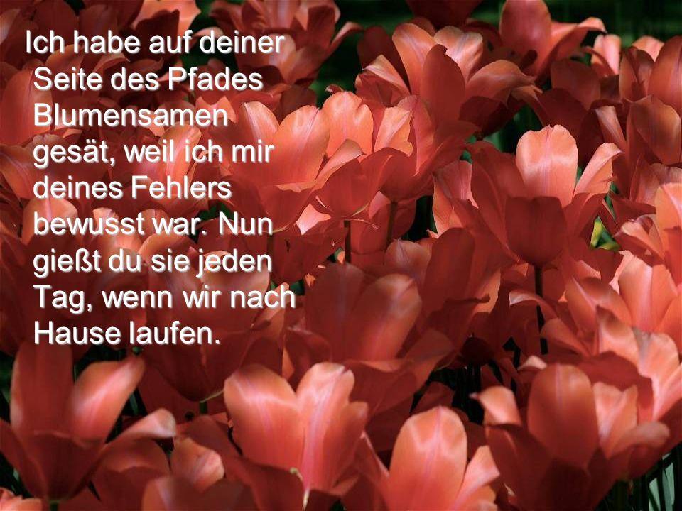 Ich habe auf deiner Seite des Pfades Blumensamen gesät, weil ich mir deines Fehlers bewusst war.