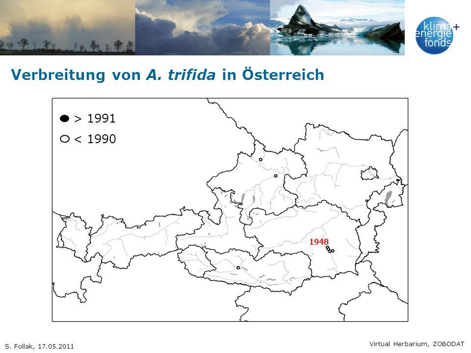 Verbreitung von A. trifida in Österreich
