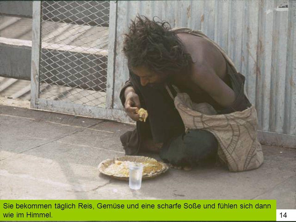 Sie bekommen täglich Reis, Gemüse und eine scharfe Soße und fühlen sich dann wie im Himmel.