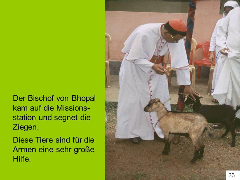 Der Bischof von Bhopal kam auf die Missions-station und segnet die Ziegen. Diese Tiere sind für die Armen eine sehr große Hilfe.