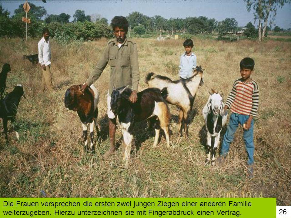 Die Frauen versprechen die ersten zwei jungen Ziegen einer anderen Familie weiterzugeben. Hierzu unterzeichnen sie mit Fingerabdruck einen Vertrag.