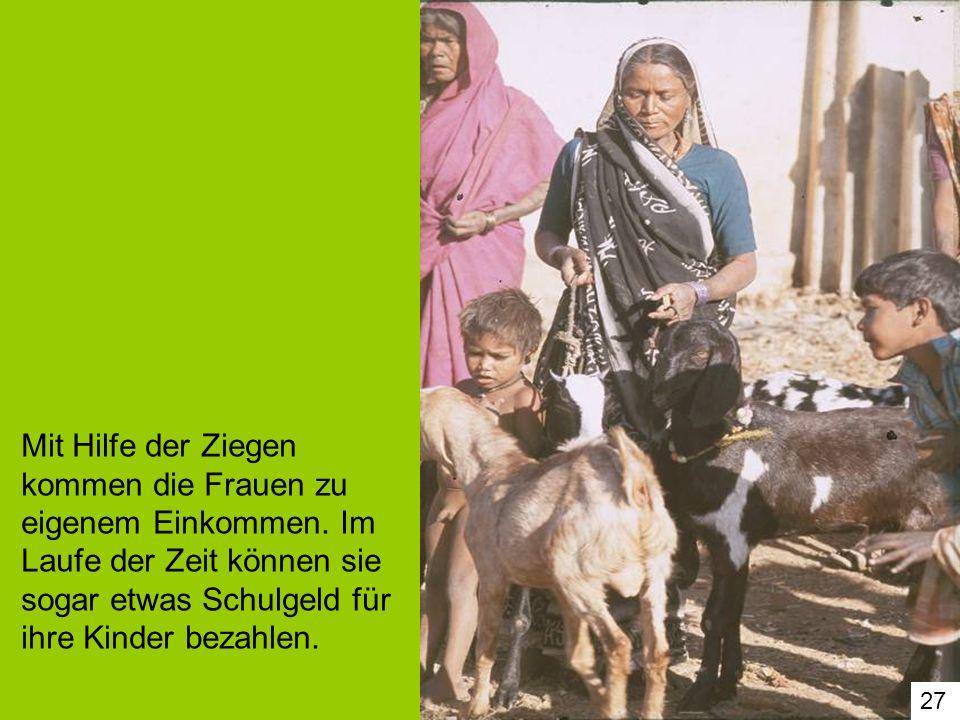 Mit Hilfe der Ziegen kommen die Frauen zu eigenem Einkommen