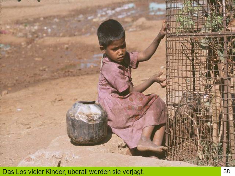 Das Los vieler Kinder, überall werden sie verjagt.