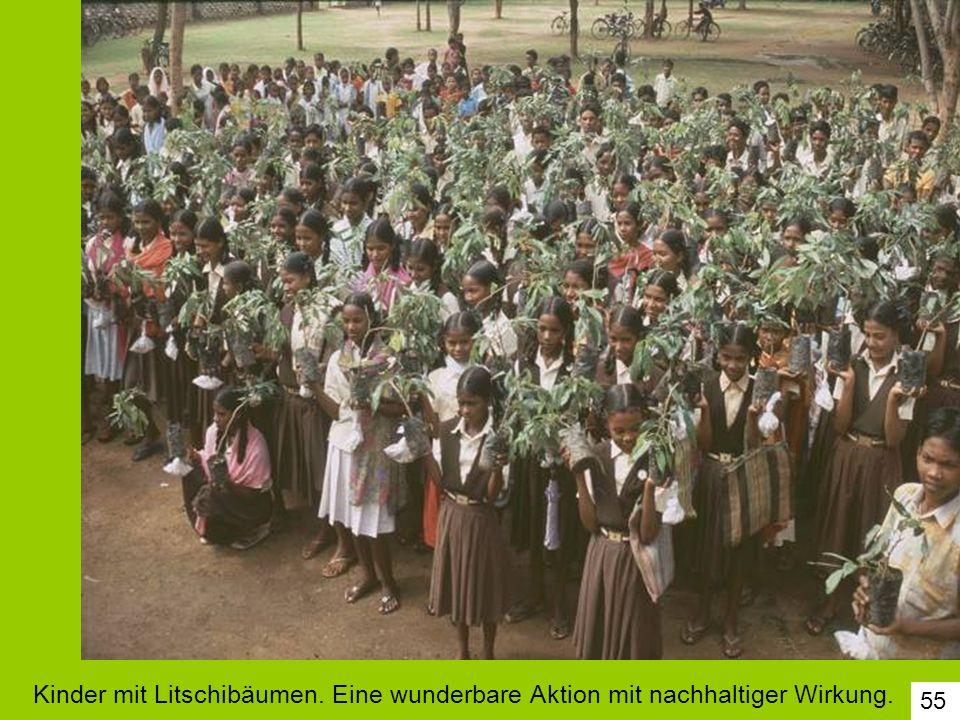 Kinder mit Litschibäumen