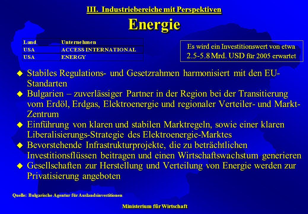 III. Industriebereiche mit Perspektiven Energie