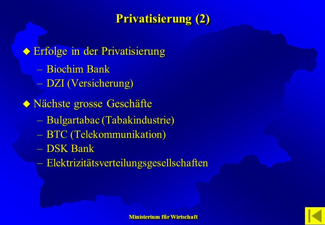 Privatisierung (2) Erfolge in der Privatisierung