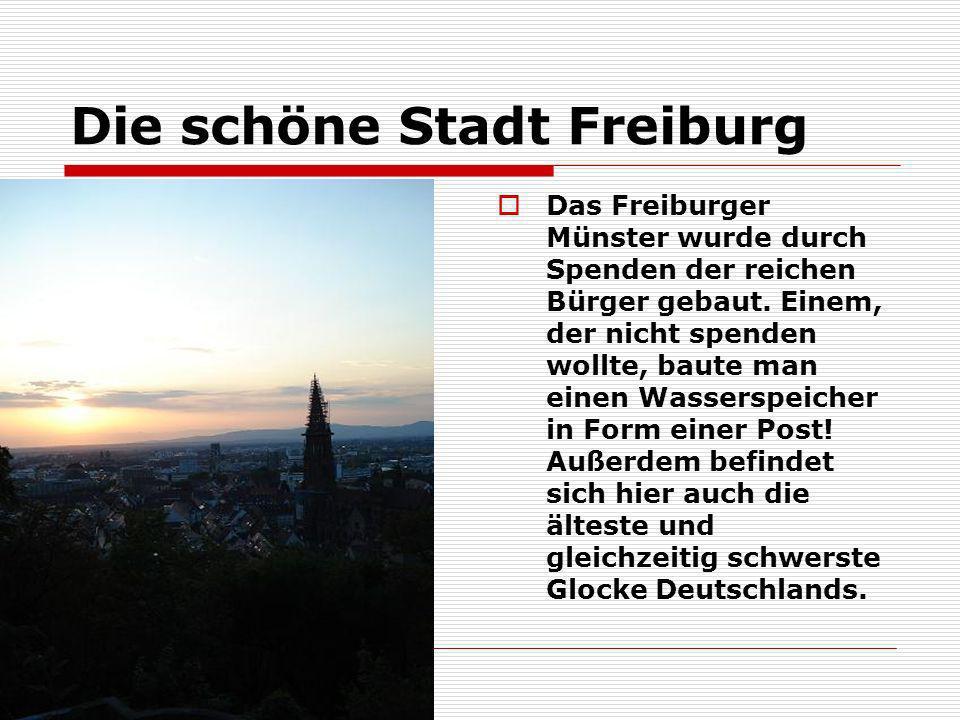 Die schöne Stadt Freiburg