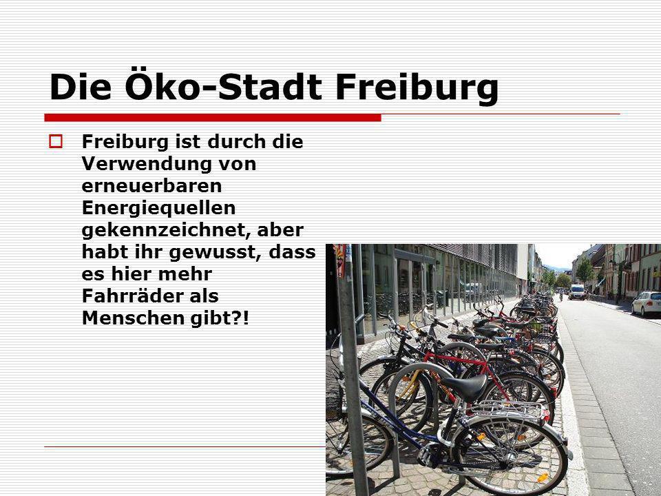 Die Öko-Stadt Freiburg