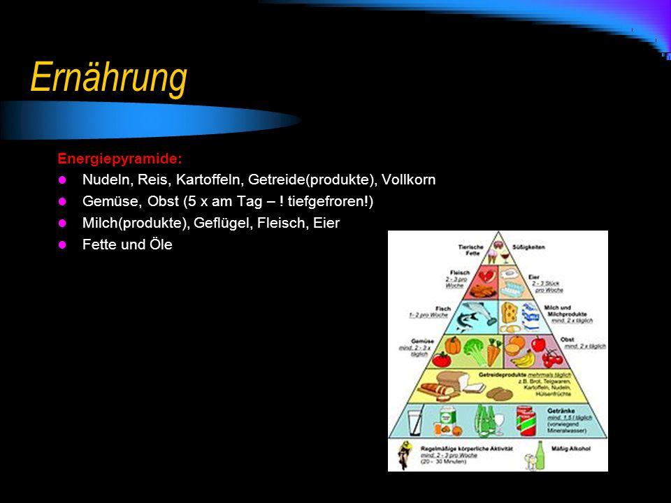 Ernährung Energiepyramide: