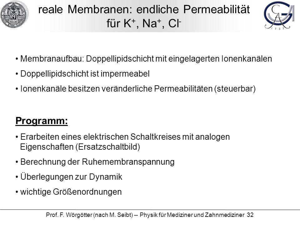 reale Membranen: endliche Permeabilität für K+, Na+, Cl-