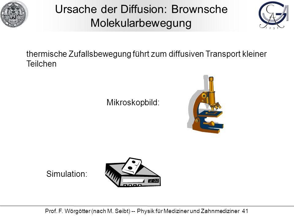 Ursache der Diffusion: Brownsche Molekularbewegung