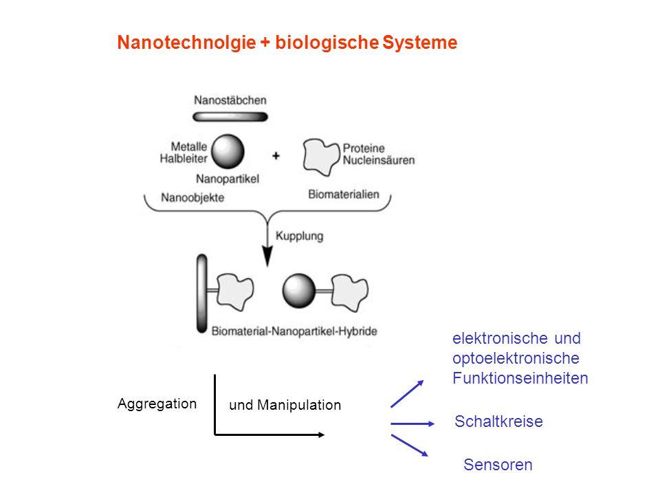 Nanotechnolgie + biologische Systeme