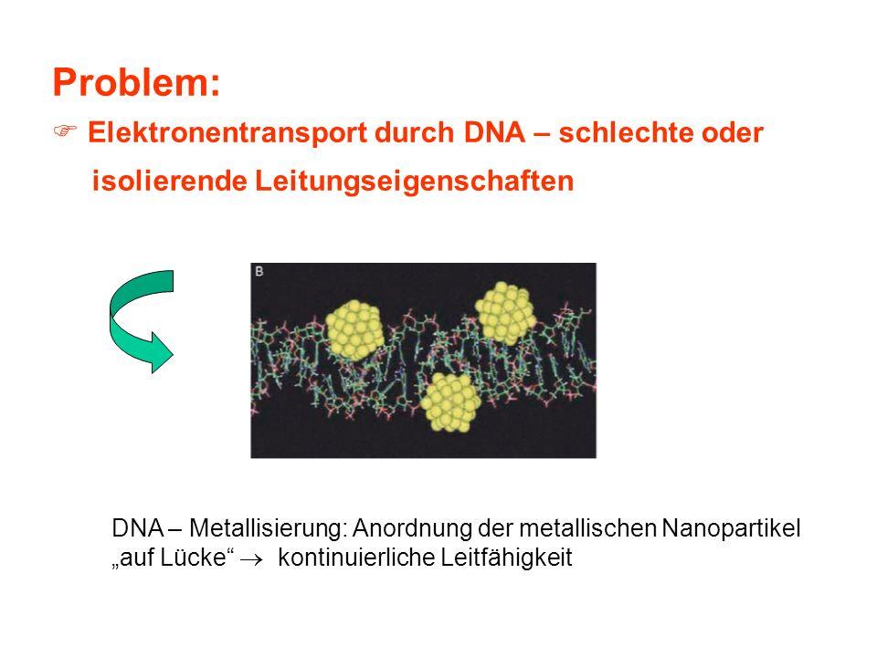 Problem: Elektronentransport durch DNA – schlechte oder