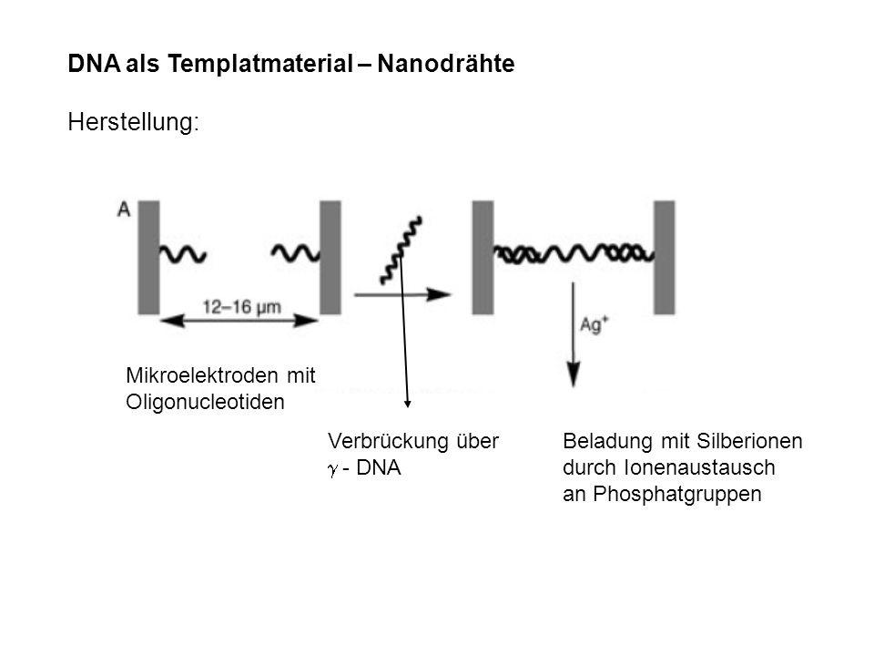 DNA als Templatmaterial – Nanodrähte Herstellung: