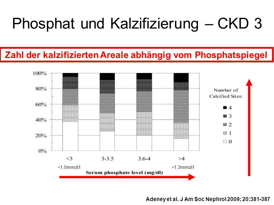 Zahl der kalzifizierten Areale abhängig vom Phosphatspiegel