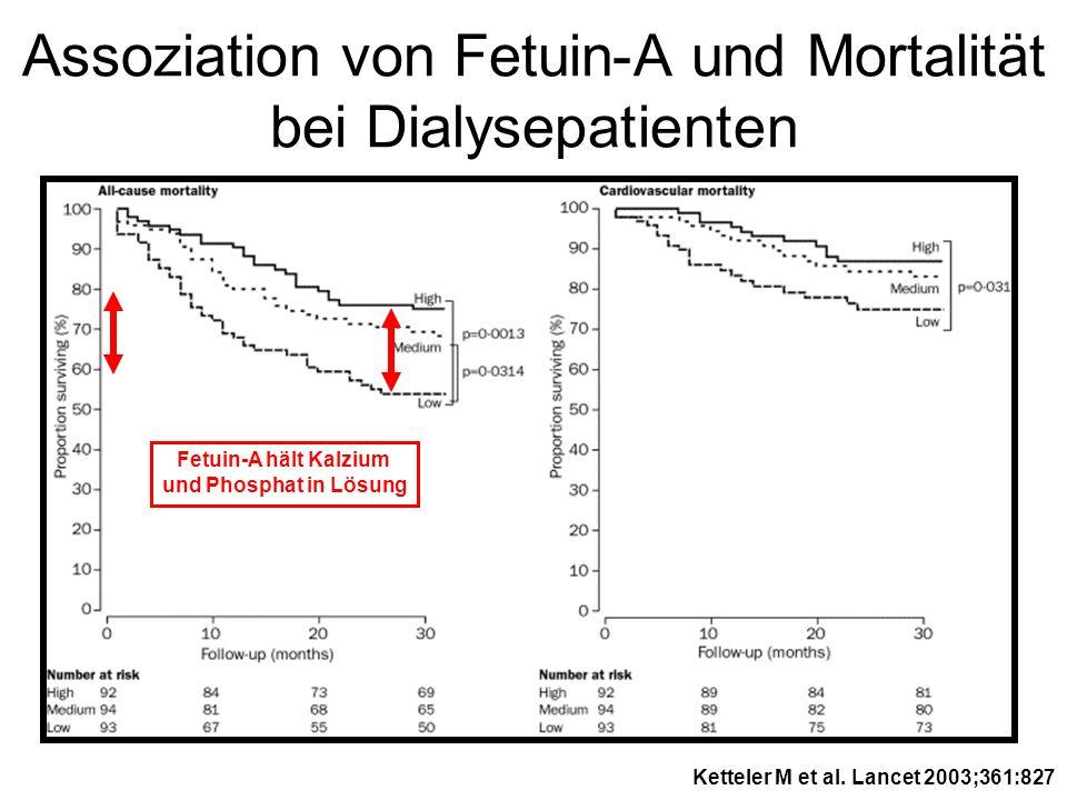 Assoziation von Fetuin-A und Mortalität bei Dialysepatienten