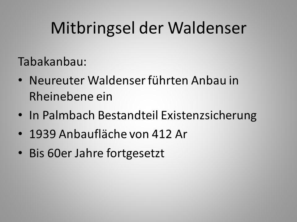 Mitbringsel der Waldenser