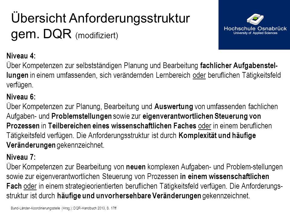 Übersicht Anforderungsstruktur gem. DQR (modifiziert)