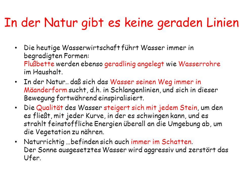 In der Natur gibt es keine geraden Linien