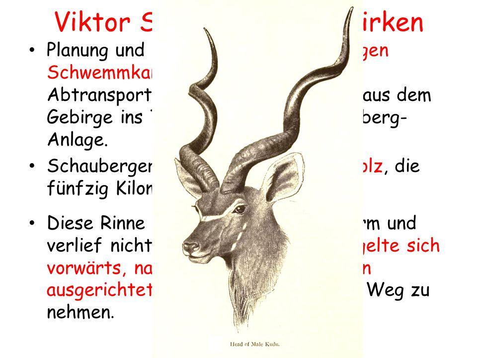 Viktor Schauberger`s Wirken