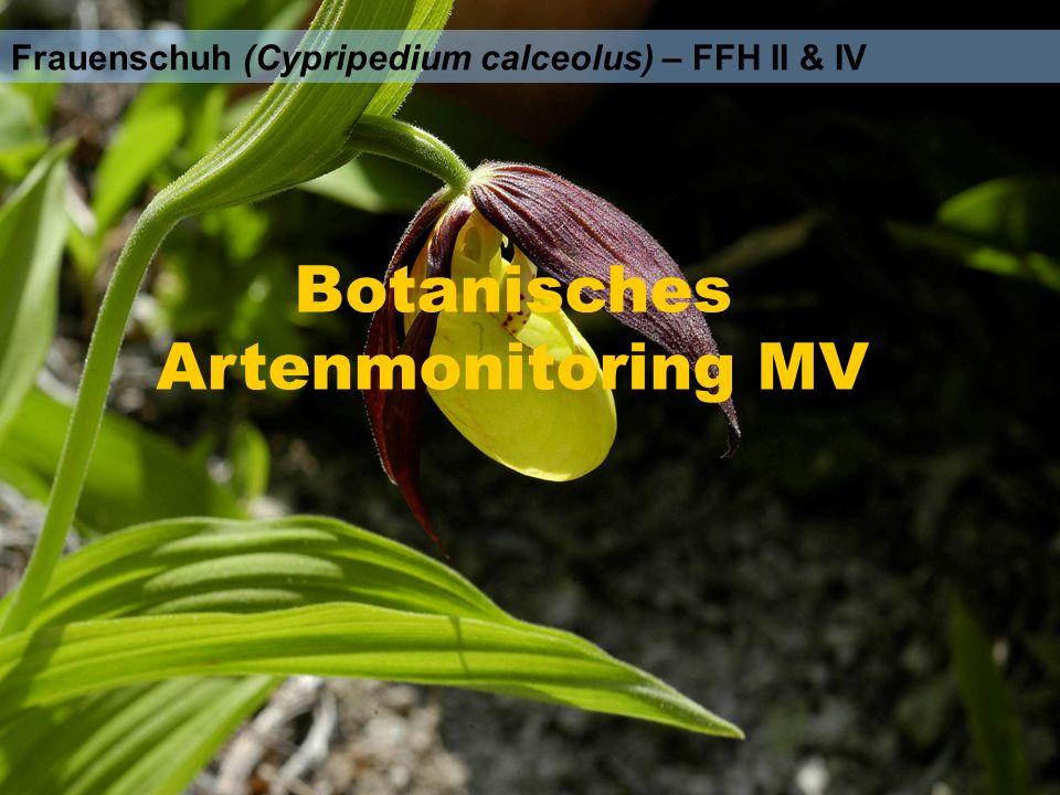 Botanisches Artenmonitoring MV