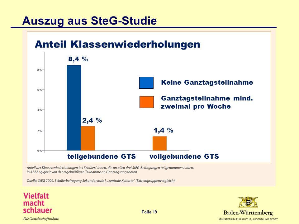 Auszug aus SteG-Studie