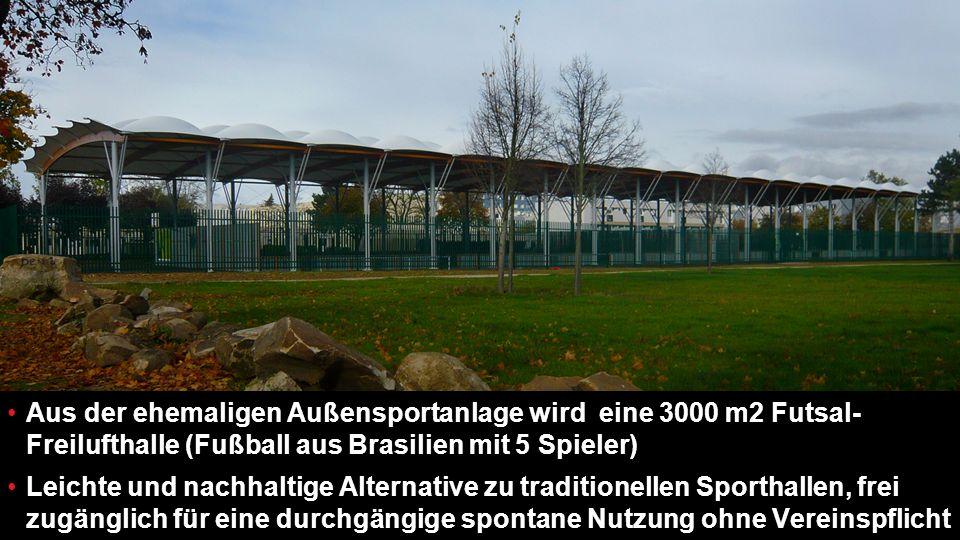 Aus der ehemaligen Außensportanlage wird eine 3000 m2 Futsal-Freilufthalle (Fußball aus Brasilien mit 5 Spieler)