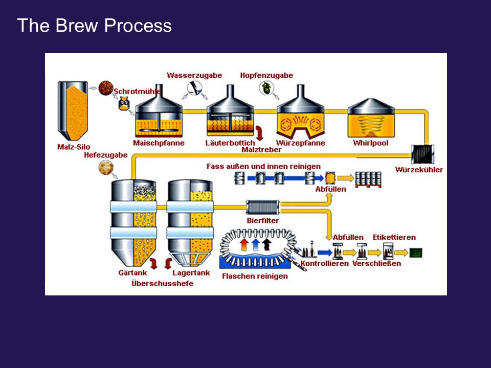 The Brew Process