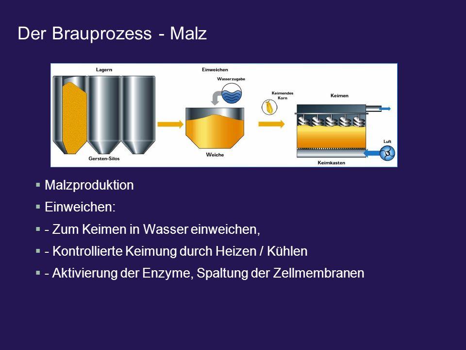 Der Brauprozess - Malz Malzproduktion Einweichen: