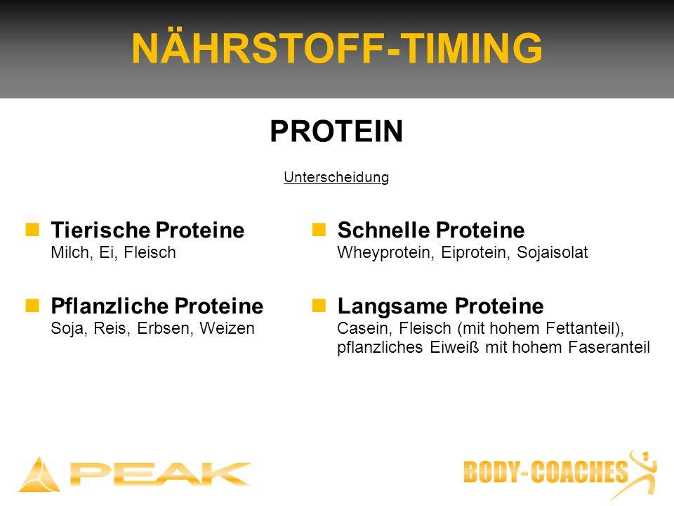 NÄHRSTOFF-TIMING PROTEIN n Tierische Proteine n Schnelle Proteine