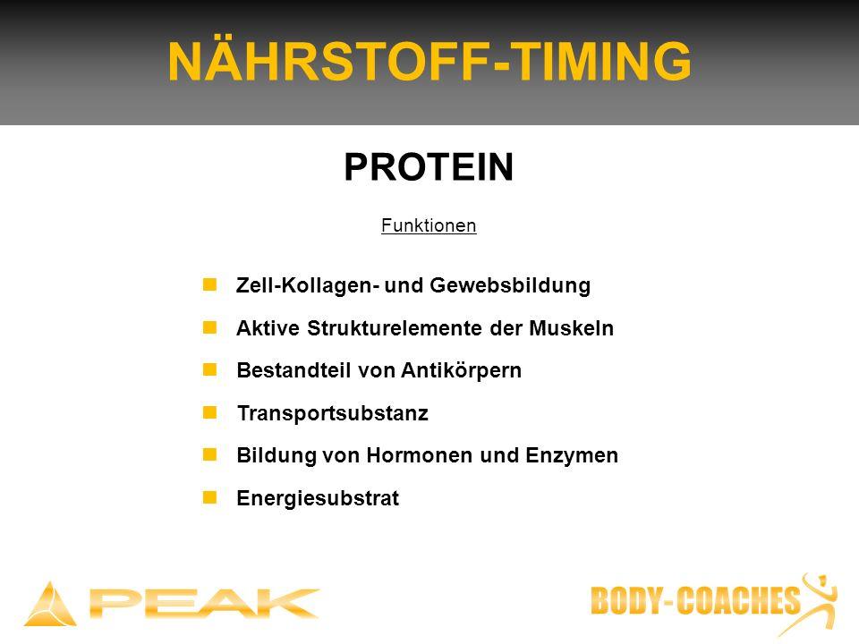 NÄHRSTOFF-TIMING PROTEIN n Zell-Kollagen- und Gewebsbildung