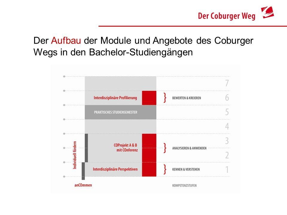 Der Aufbau der Module und Angebote des Coburger Wegs in den Bachelor-Studiengängen