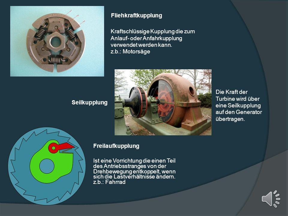 Fliehkraftkupplung Kraftschlüssige Kupplung die zum Anlauf- oder Anfahrkupplung verwendet werden kann.