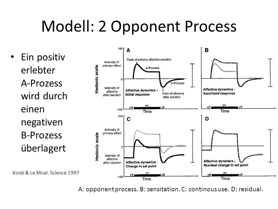 Modell: 2 Opponent Process