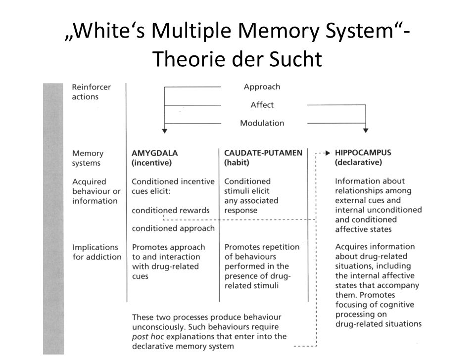 """White's Multiple Memory System - Theorie der Sucht"