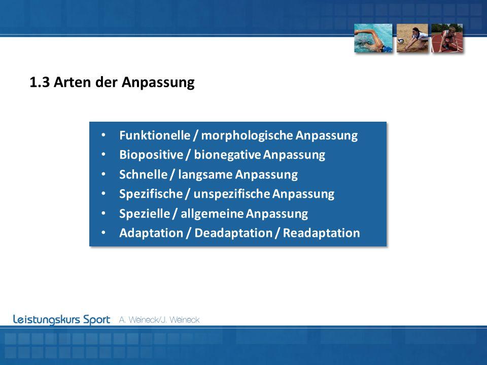 1.3 Arten der Anpassung Funktionelle / morphologische Anpassung
