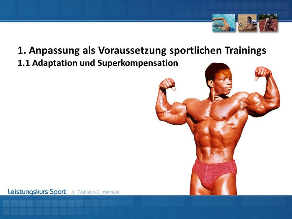 1. Anpassung als Voraussetzung sportlichen Trainings 1
