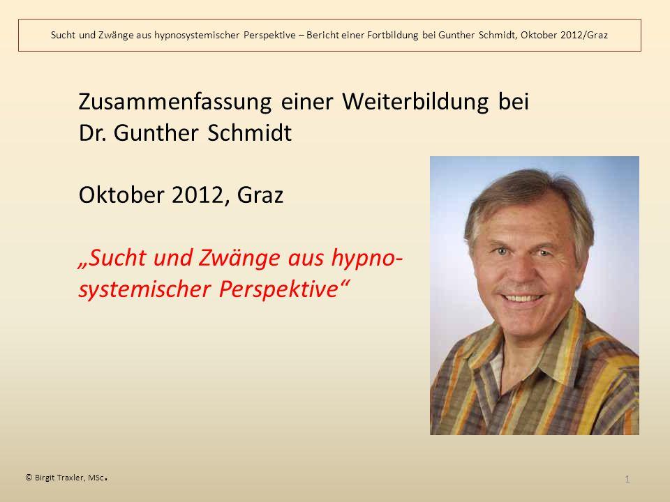 Zusammenfassung einer Weiterbildung bei Dr. Gunther Schmidt