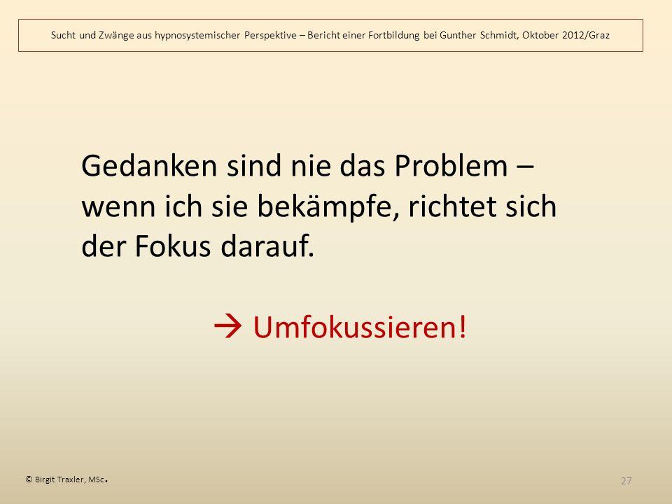 Sucht und Zwänge aus hypnosystemischer Perspektive – Bericht einer Fortbildung bei Gunther Schmidt, Oktober 2012/Graz