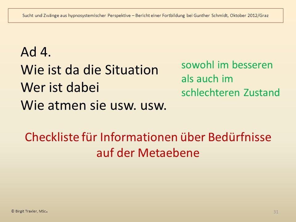 Checkliste für Informationen über Bedürfnisse auf der Metaebene