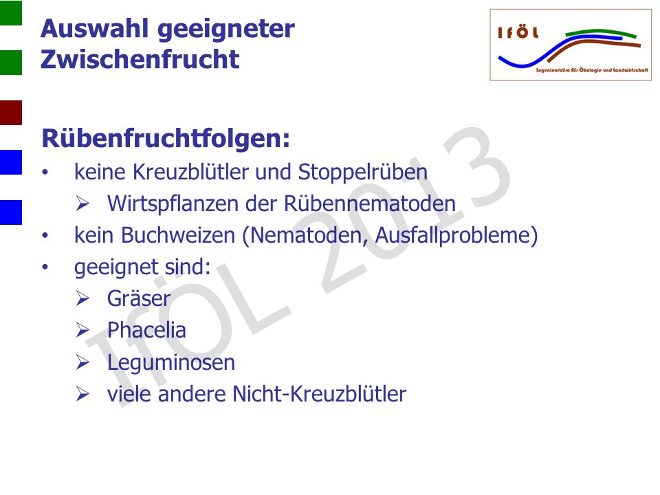 IfÖL 2013 Auswahl geeigneter Zwischenfrucht Rübenfruchtfolgen: