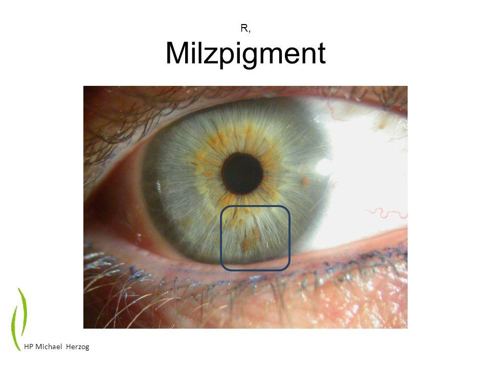 R, Milzpigment HP Michael Herzog