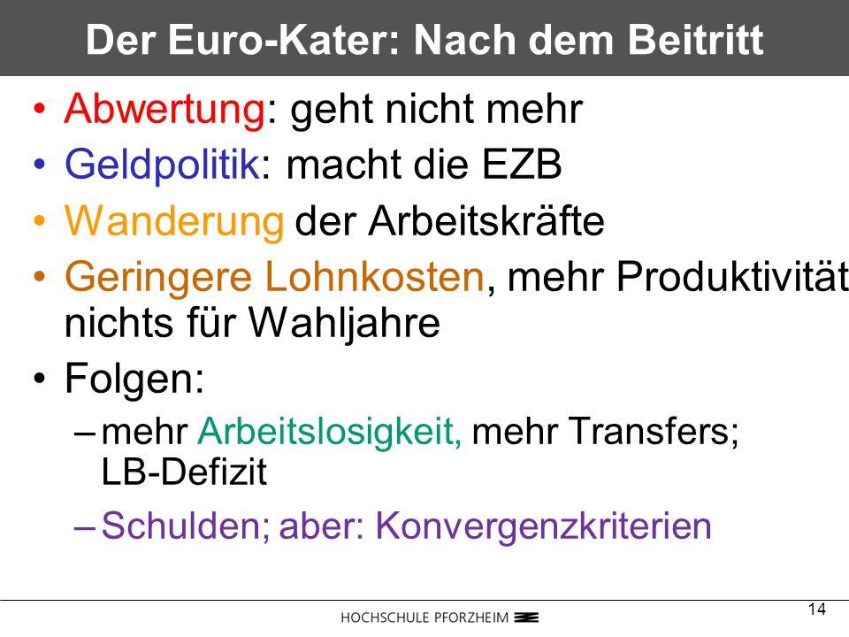 Der Euro-Kater: Nach dem Beitritt