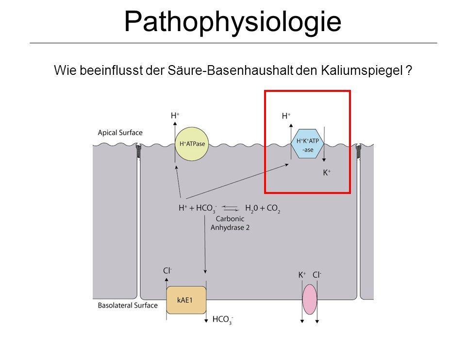 Pathophysiologie Wie beeinflusst der Säure-Basenhaushalt den Kaliumspiegel