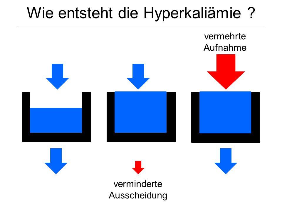 Wie entsteht die Hyperkaliämie