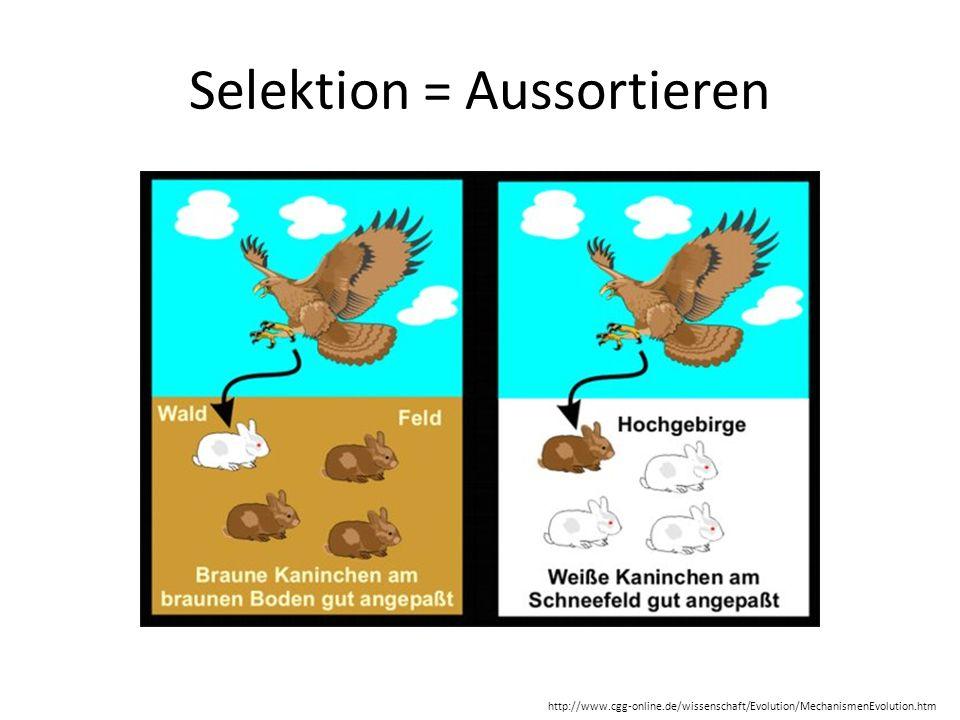 Selektion = Aussortieren