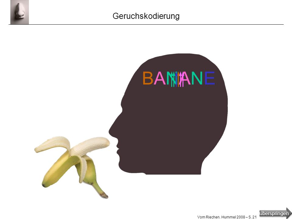 Geruchskodierung BANANE