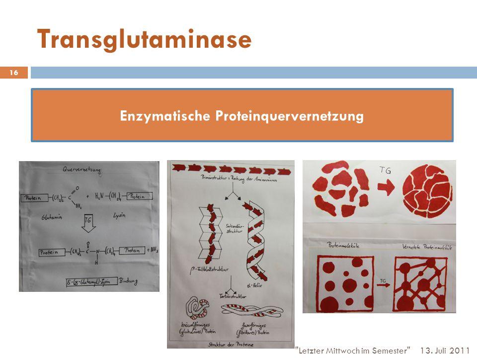 Enzymatische Proteinquervernetzung