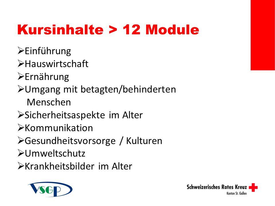 Kursinhalte > 12 Module